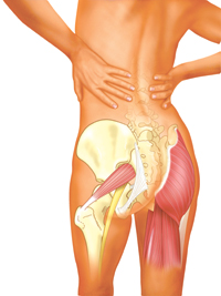 more than a pain in the buttocks massage therapy canada rh massagetherapycanada com Lower Back Pain Left Buttock Pressure Areas On Buttocks